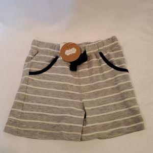Gray Pull On Shorts